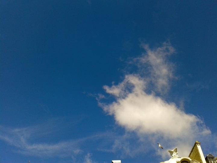 Blue Sky - 1